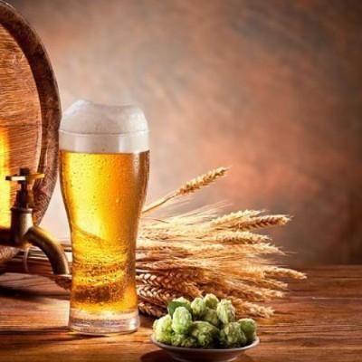 Bier brauen